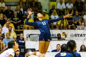 Georgia Tech volleyball Gabriela Stevnetchei