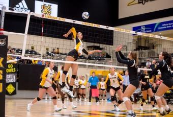 Kennesaw State volleyball Liesl Engelbrecht